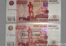 Во Владимире уроженец Армении сбывал фальшивые 5000 купюры