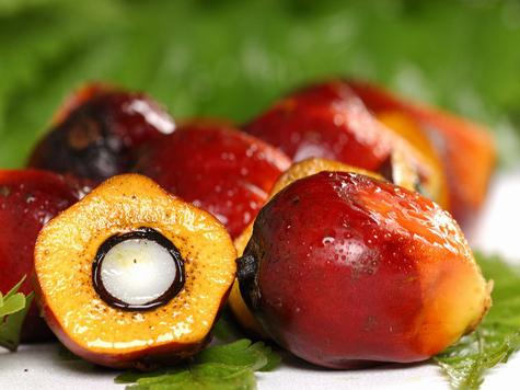 Пальмовое масло: вред или польза?